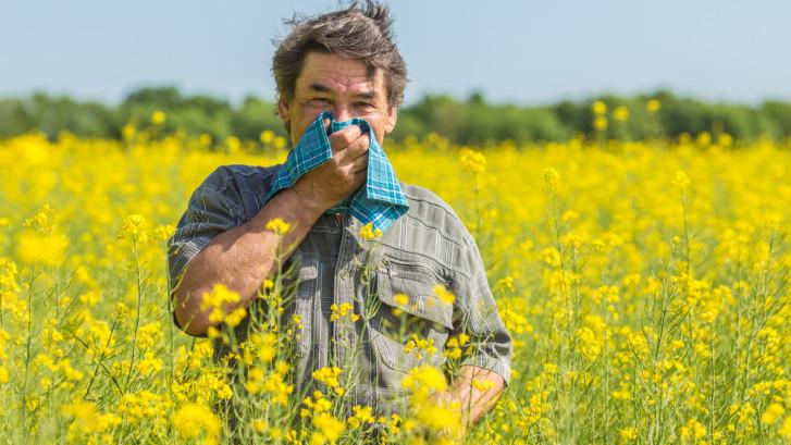 springtime-allergies-image