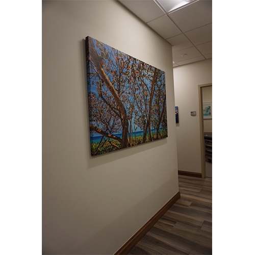 Concierge Medicine Doctor Office