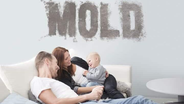 Mold-in-Your-Home