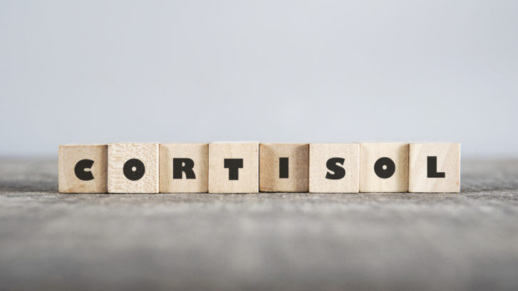 Cortisol isn't the only stress hormone, but it's the primary one released when the body feels it's in danger.